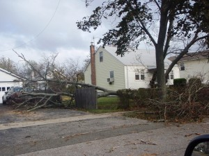 PA300029 300x225 Hurricane Sandy, a Review, by a Contributing Author from Long Island