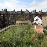 2011 Urban Farming in Review