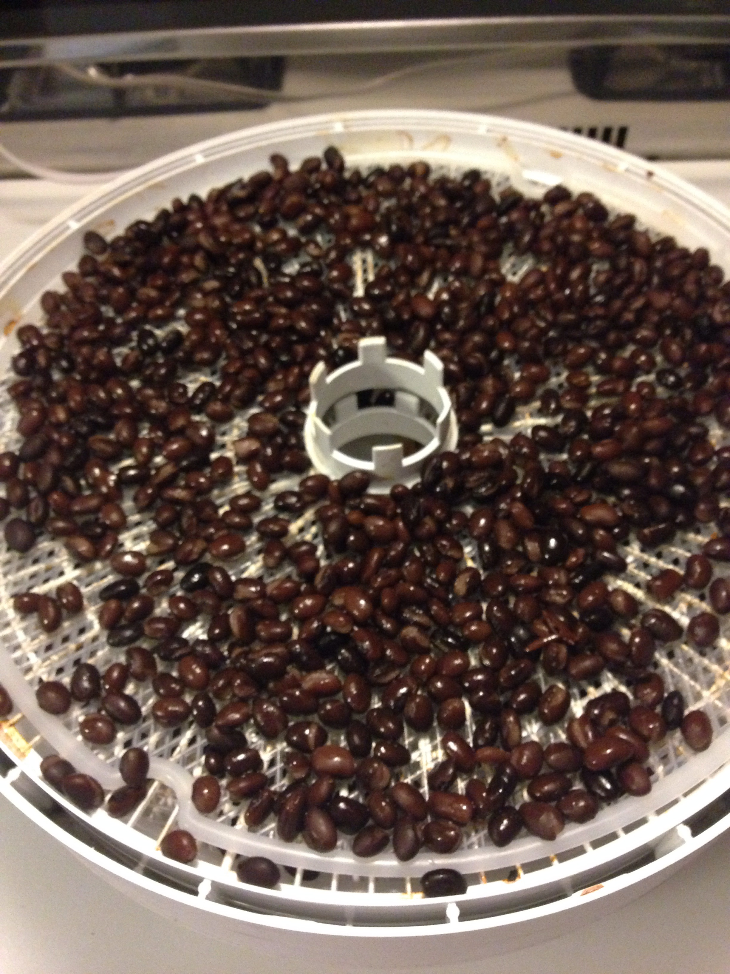 Dehydrating Black Beans for Storage